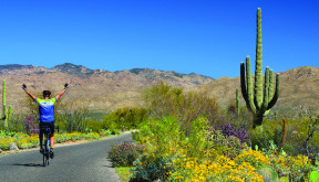 Bike Tours in Arizona with Sojourn make for amazing warm winter cycling trips