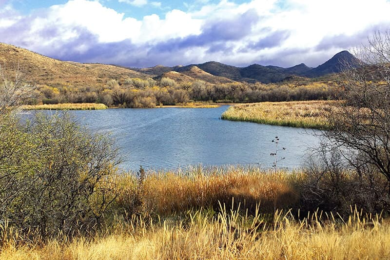 Arizona- Patagonia Lake, Sonoran Desert and Saguaro National Park Bike Tour