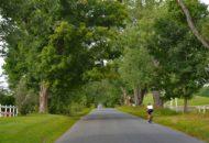 Vermont Bike & Brew Tour rider in the NEK
