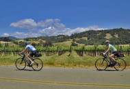 California wine country bike tour cyclists in Alexander Valley