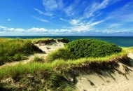 Cape Cod dunes during a Sojourn bike tour