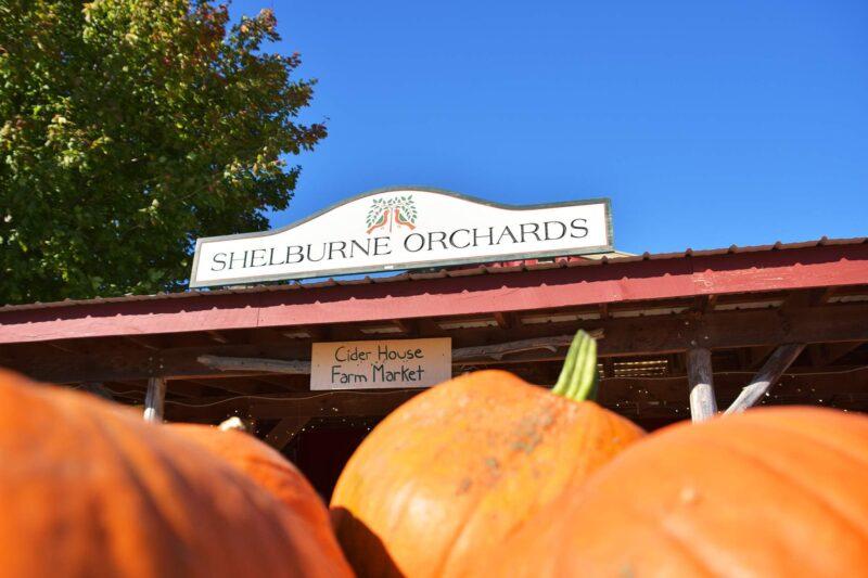 Vermont: Stowe Fall Foliage Bike Tour