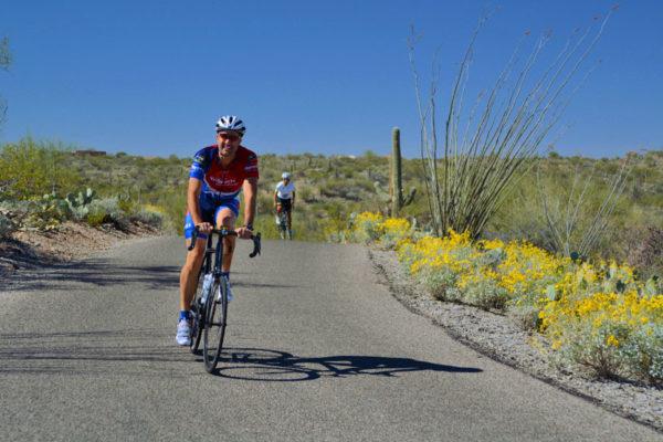 Arizona Bike Tour cyclists in Saguaro National Park