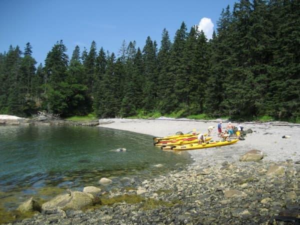 Maine-active-vacation-sea-kayak-600x800