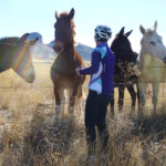 arizona bicycle tour