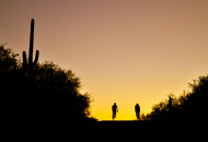 Sojourn bike tours cyclists at sunset in Arizona