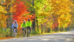 Sojourn cyclists enjoying fall foliage during a Vermont Bike Tours