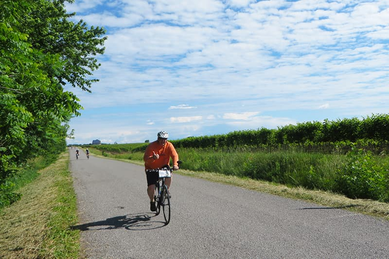 Canada: Niagara Wine Country Bike Tour