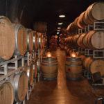Sonoma Wine Country Bike Tour