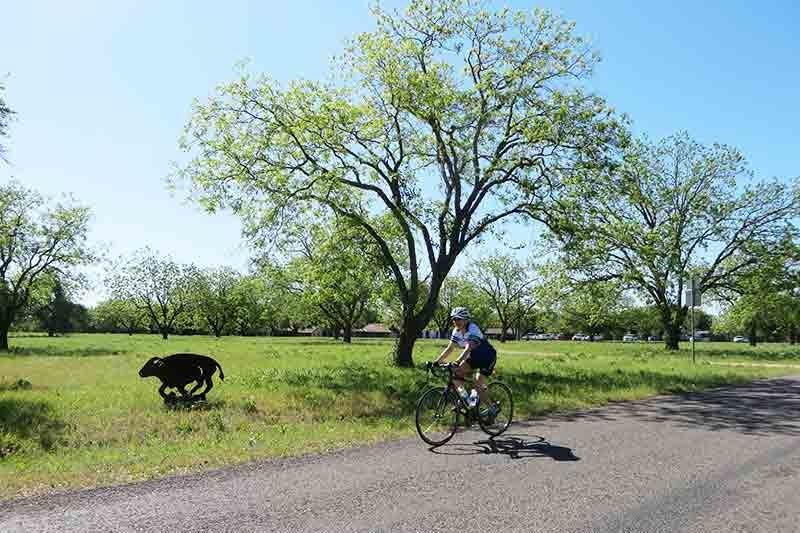 Texas Hill Country Bike Tour
