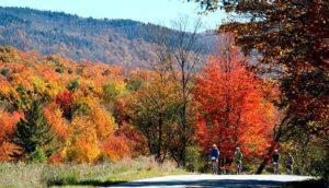 Vermont: Stowe Fall Foliage