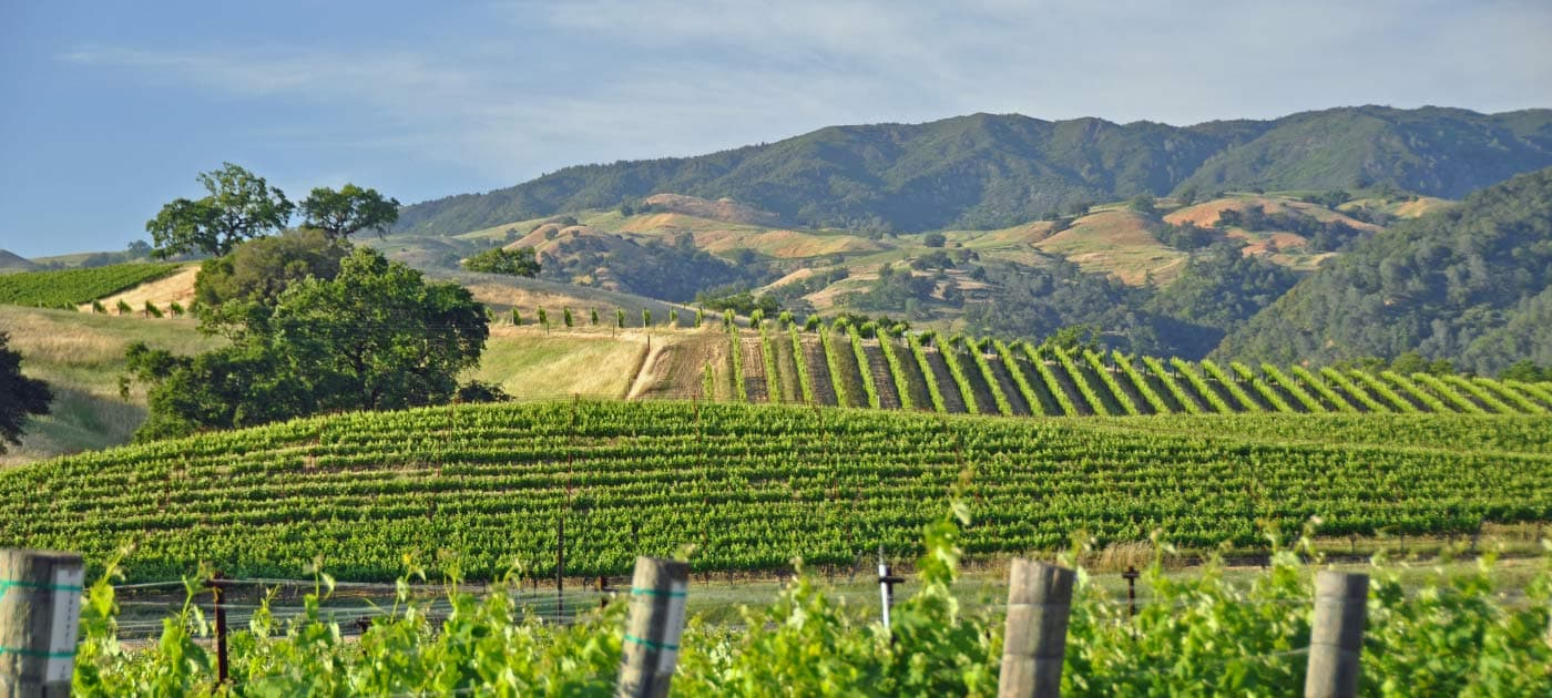 Self Guided Sonoma Wine Tours