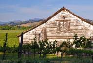 Russian River Valley barn during a California Wine Country bike tour