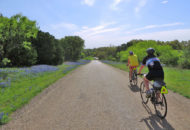 Texas bike tours feature bluebonnet-lined back roads