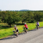 Canada Bike Tour: Niagara Wine Country
