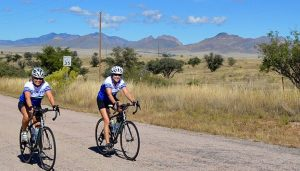 Arizona Bike Tour: Sonoran Desert and Saguaro National Park