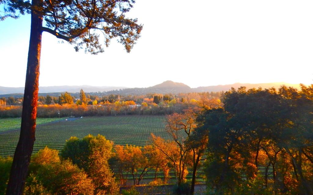 Dawn over Healdsburg, CA
