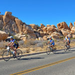 joshua tree bicycle tour