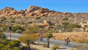 Sojourn Joshua Tree National Park Bike Tours