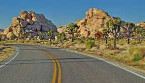 Southern California bike tours in Joshua Tree National Park and Palm Springs