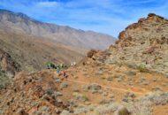 Palm Springs California Bike Tour hikers