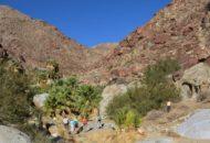 Joshua Tree bike tour cyclists hiking near Palm Springs California