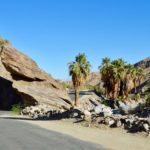 Palm Springs & Joshua Tree National Park Bike Tour