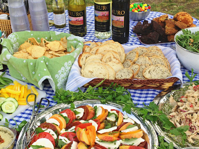 summer bike tour picnic at truro vineyard on cape cod