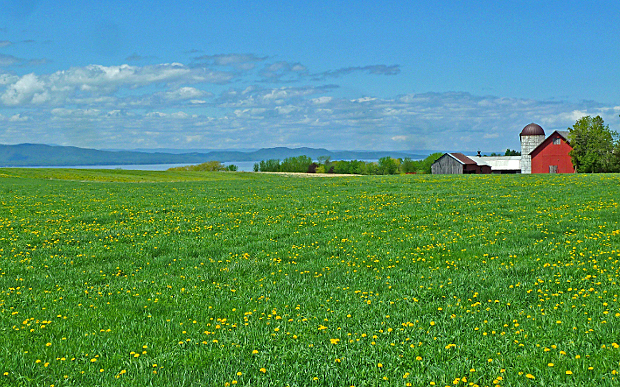 views over lake champlain during a summer cycling tour in vermont