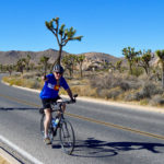 Meet Your Tour Leader - Mark Piccone Joshua Tree National Park Bike Tour