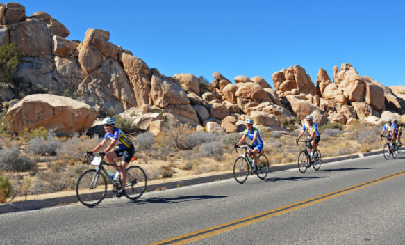 Meet Your Tour Leader - Mark Piccone Joshua Tree National Park Bike Tour - Otherworldy bicycling