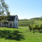 Niagara Wine Bike Tours