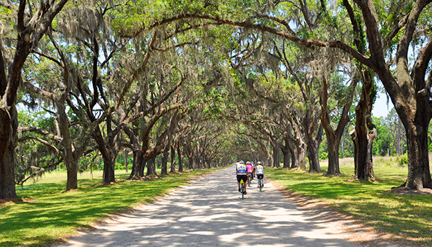 Savannah, GA to Charleston, SC Bike Tour