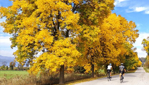 Vermont Fall Foliage Lake Champlain Valley Bike Tour