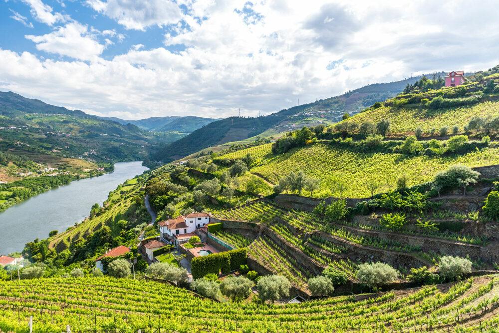 Portugal: Porto, Vinho Verde and Douro Valley Bike Tour