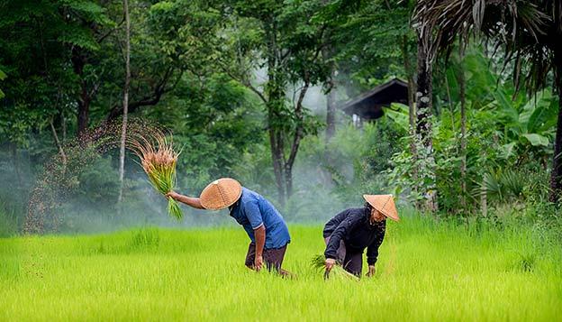 Cambodia & Vietnam Bike Trip