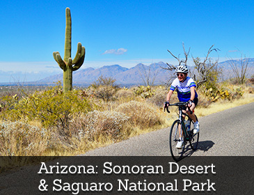 Arizona: Sonoran Desert & Saguaro National Park Bike Tour