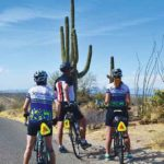 Arizona: Sonoran Desert & Saguaro National Park Bike Tour