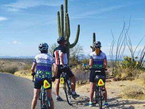 Arizona: Patagonia Lake, Sonoran Desert, and Saguaro National Park Bike Tour