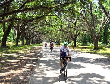Savannah, GA to Charleston, SC Bike Tour