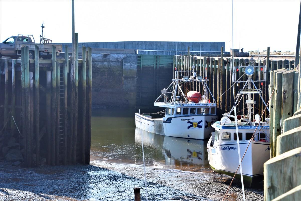 Nova Scotia Tide