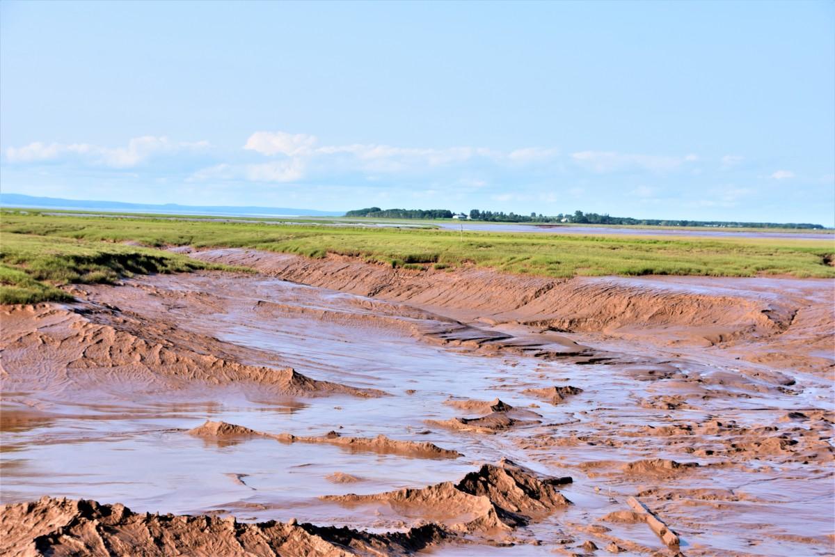 Nova Scotia Dykes