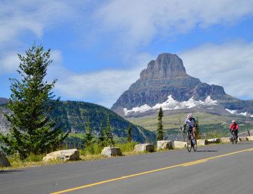 A Cyclist's Dream